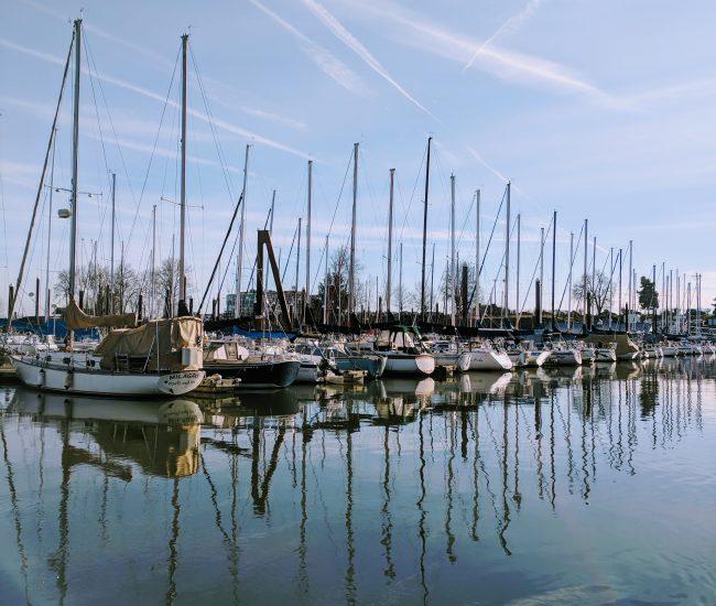 RCYC_sailboats